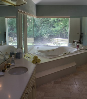 Lake House master bath